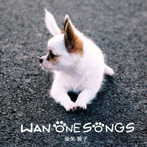 WAN ONE SONGS